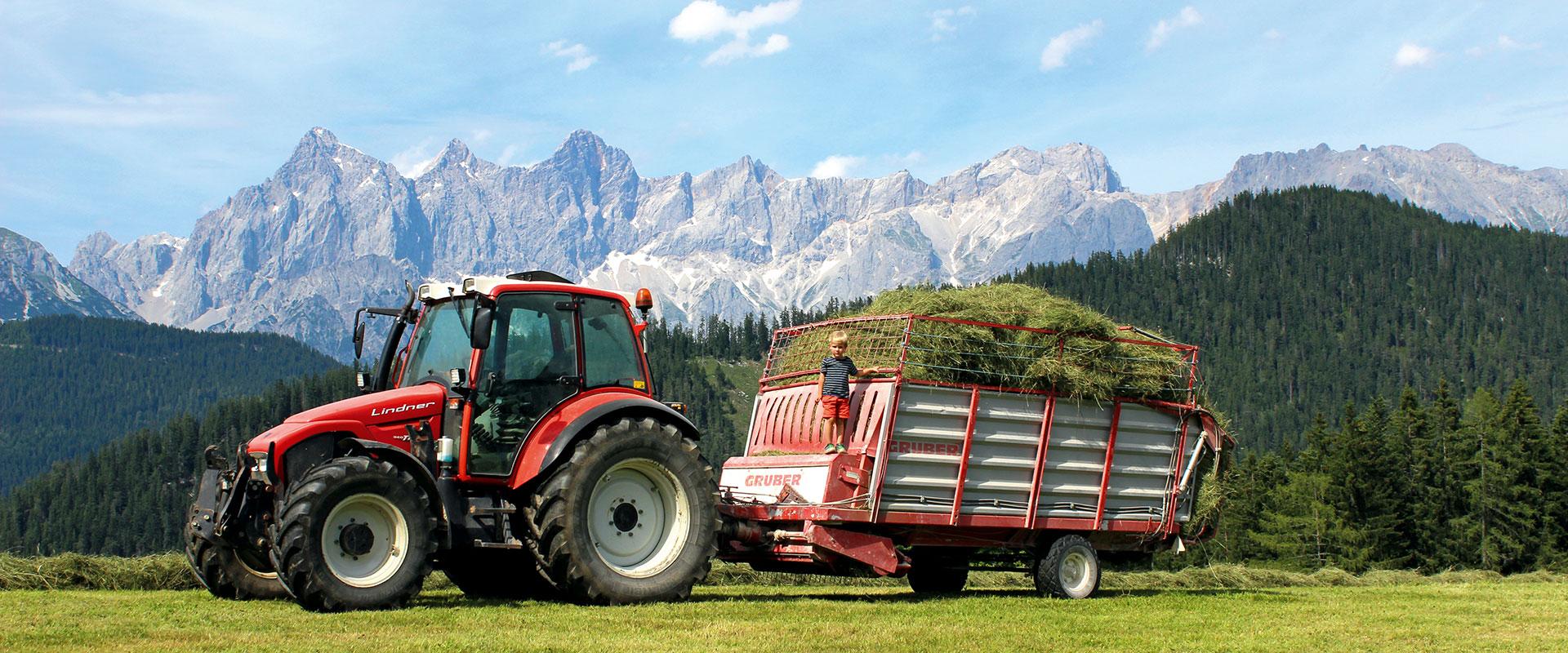 Urlaub am Bauernhof im Salzburger Land, Hinterfischbachhof in Radstadt