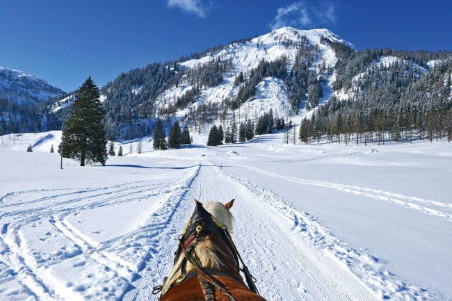 Pferdeschlittenfahrten - Winterurlaub in Radstadt, Salzburger Land